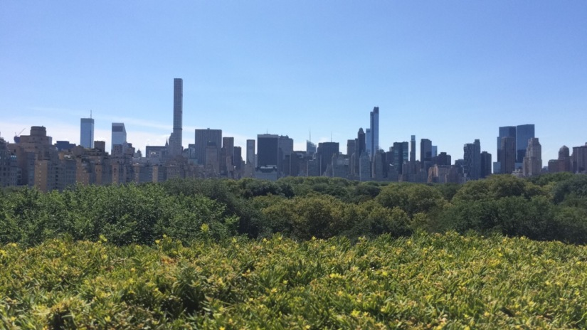 Favorite Things To Do in New YorkCity